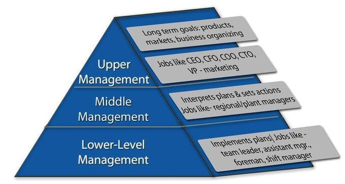 Business hierarchy