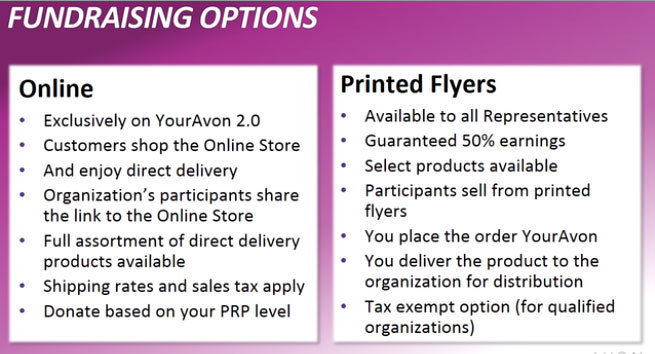 Online or Printed Flyer Fundraisers For Avon Reps