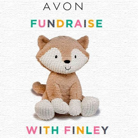 Finley the Fox Fundraising